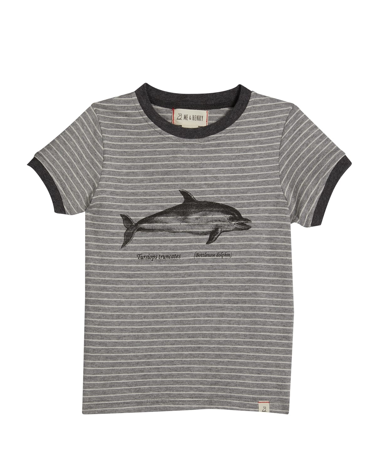 Boy's Falmouth Striped Dolphin Graphic T-Shirt