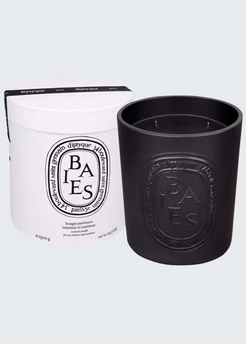 Diptyque Ceramic Baies Scented Candle - Bergdorf Goodman