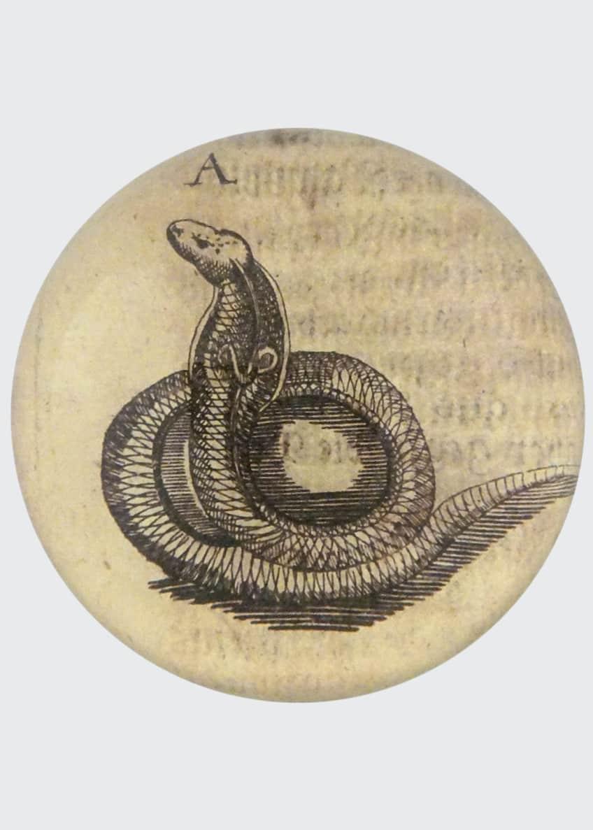 John Derian Snake Dome Paperweight