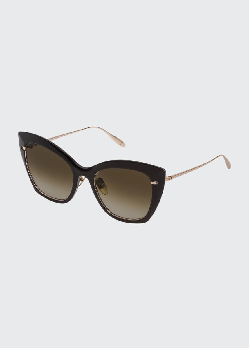 Carolina Herrera Classic Acetate and Titanium Sunglasses