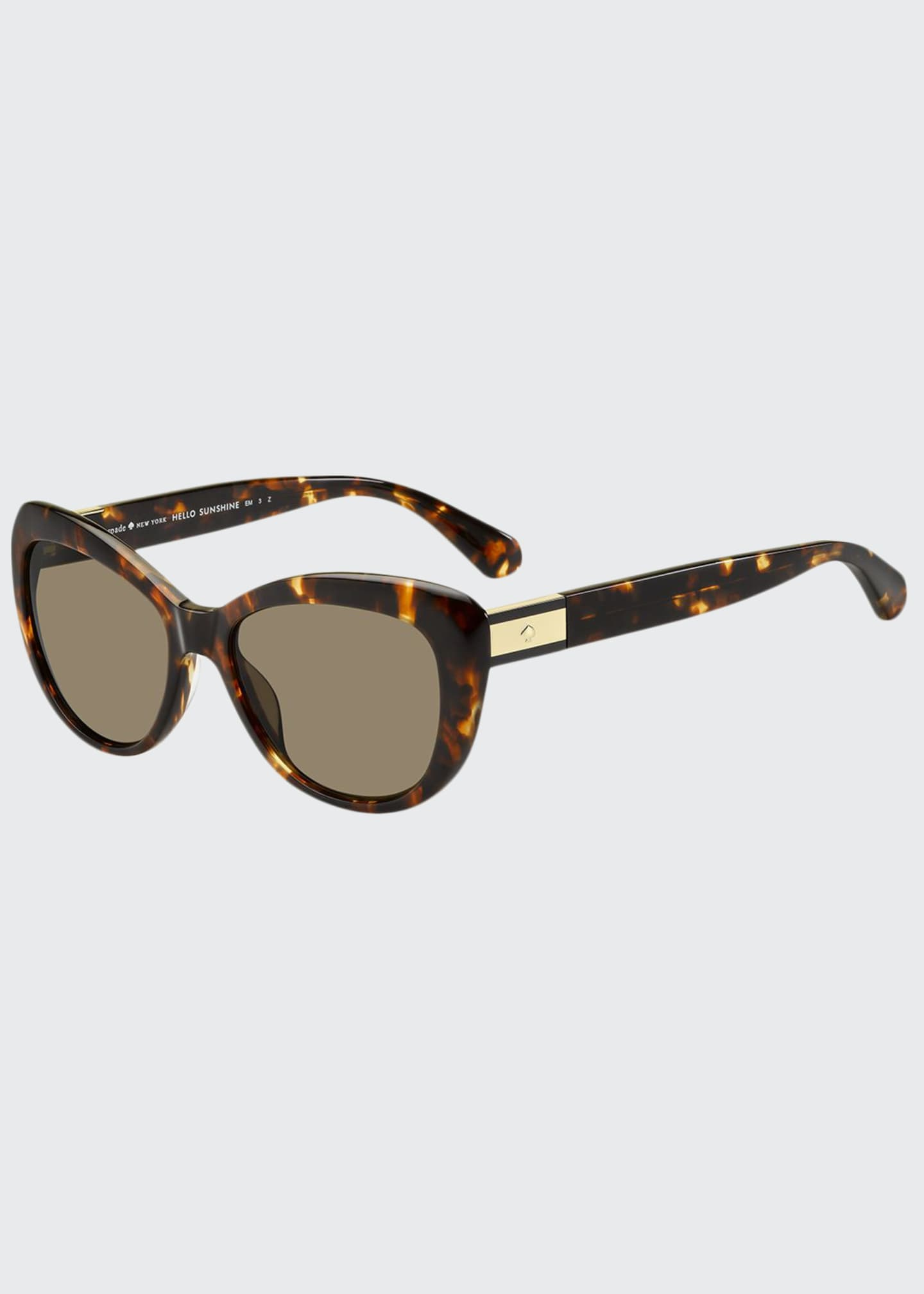 Image 1 of 1: emmalynn cat-eye polarized sunglasses
