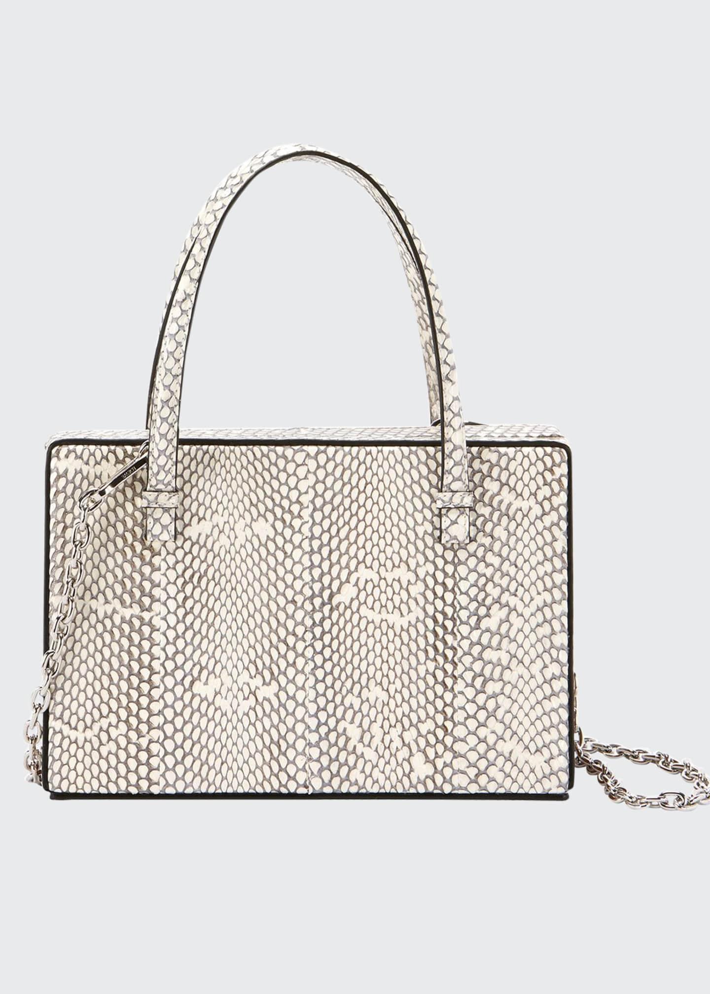 Loewe Cobra Framed Box Bag