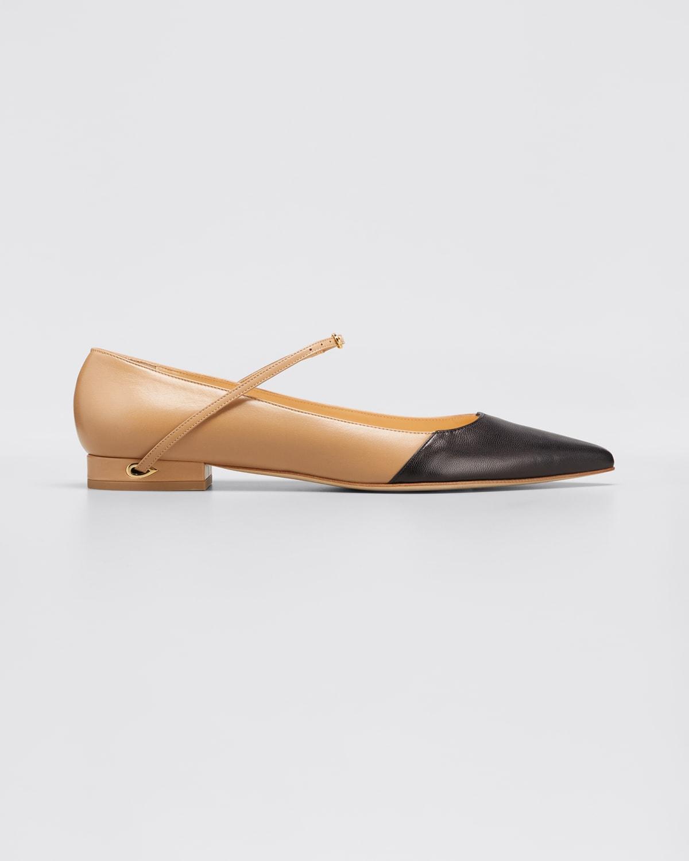 Lorenzo Bicolor Point-Toe Ballerina Flats
