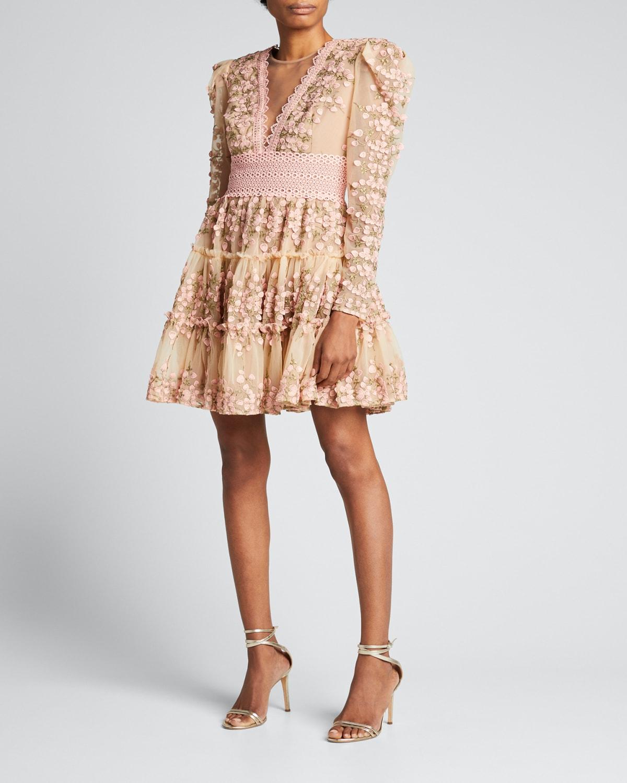 Megan Embroidered Illusion Dress