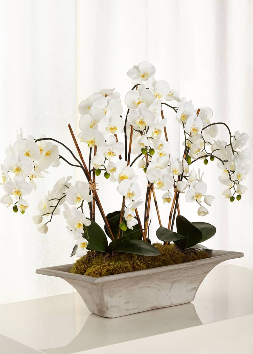 Image 1 of 1: Armature Orchids Faux-Floral Arrangement
