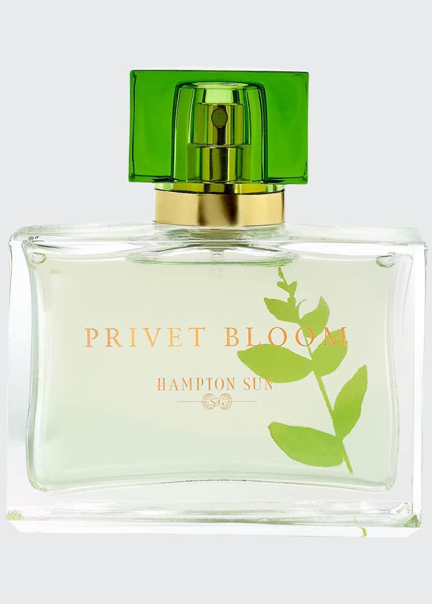 Hampton Sun Privet Bloom Eau de Parfum, 1.7oz - Bergdorf Goodman