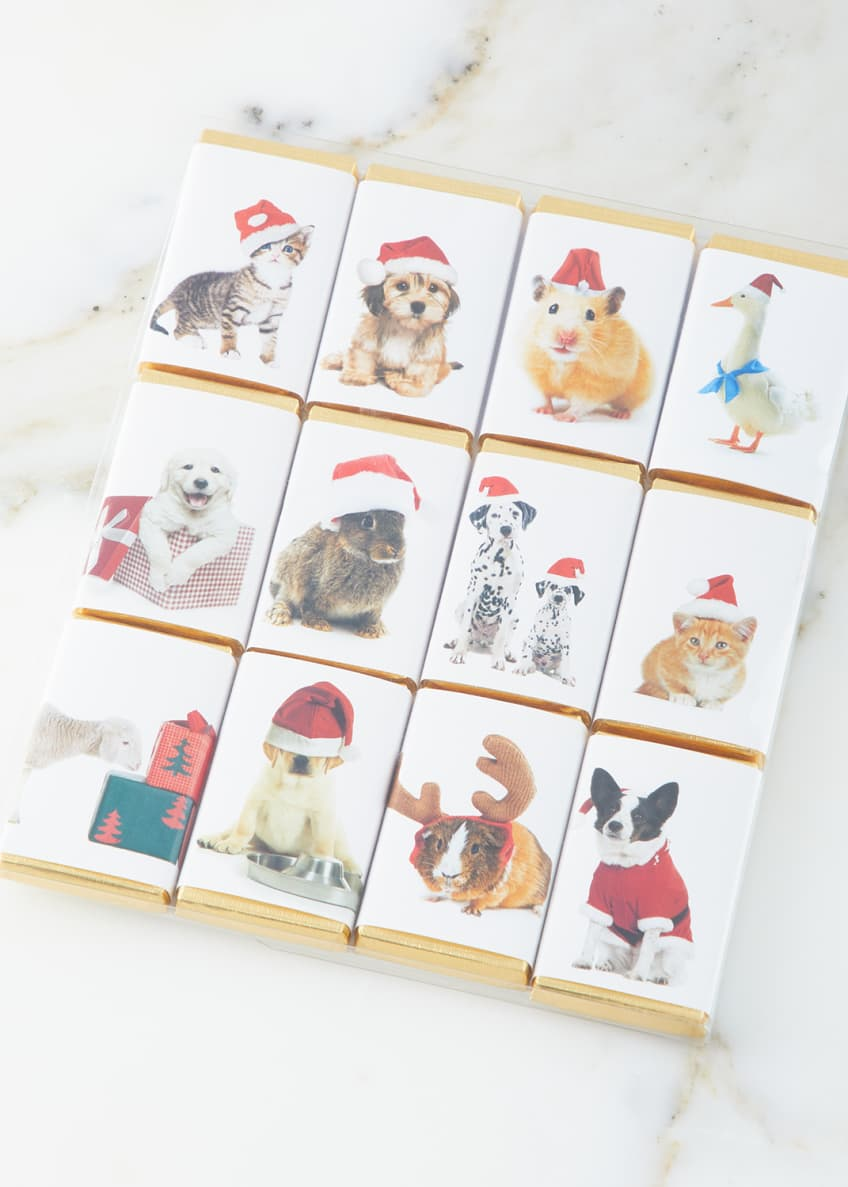 House of Dorchester Cute Animal Holiday Chocolate Bar