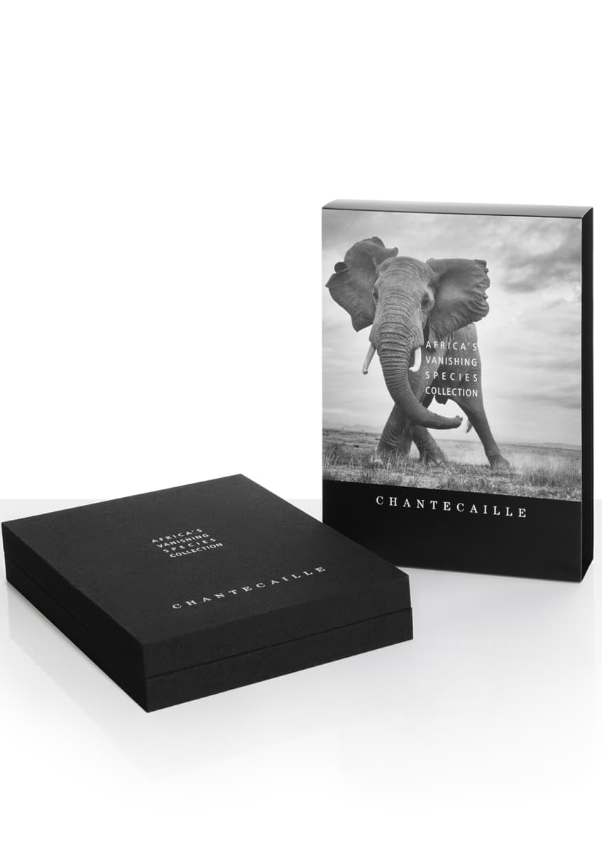 Chantecaille Limited Edition Africa's Vanishing Species Eyeshadow Collection - Bergdorf Goodman