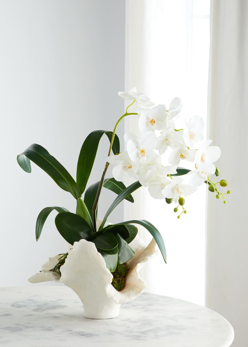 Image 1 of 1: Sea Coral Orchids Arrangement
