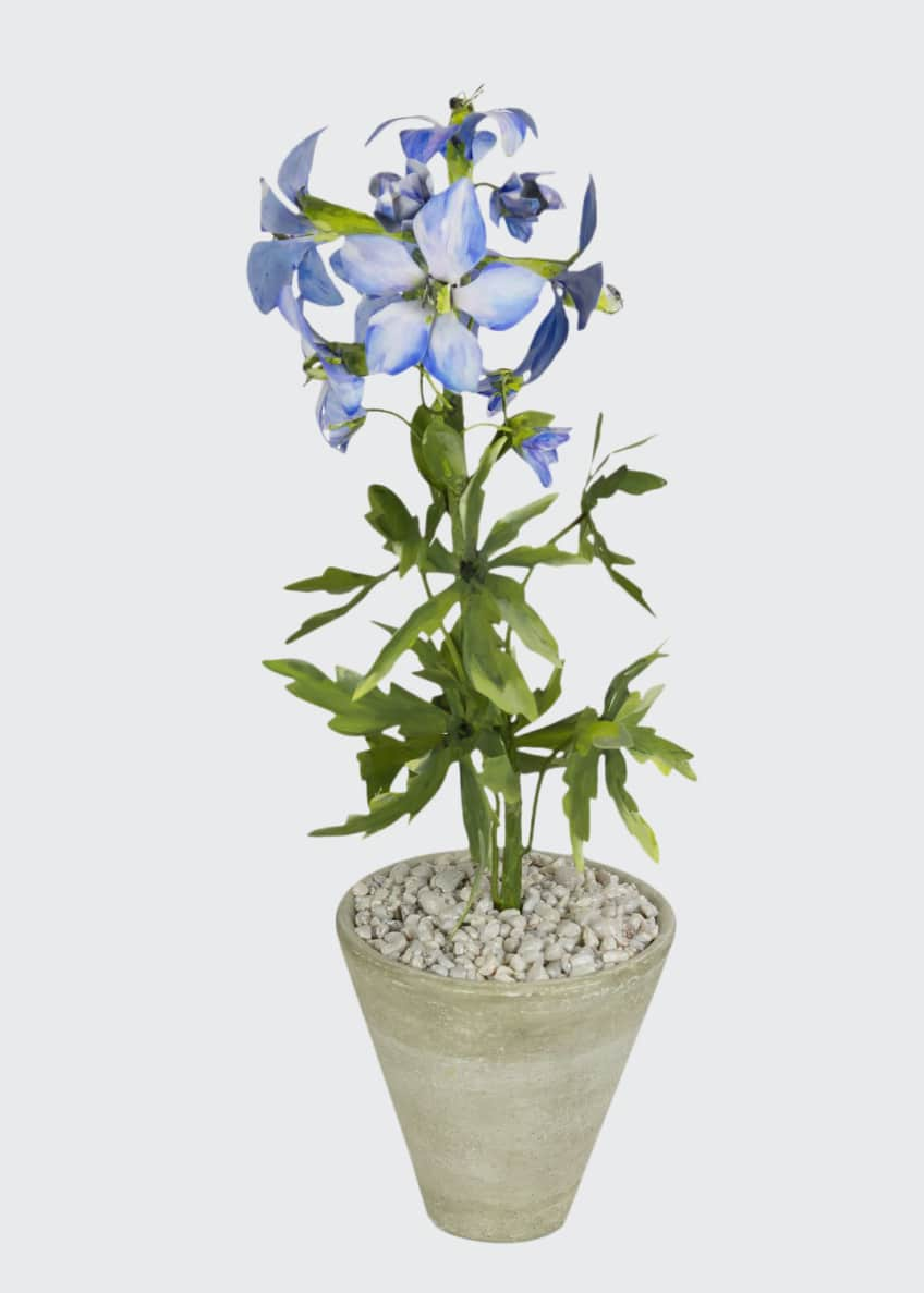Image 1 of 1: Delphinium July Birth Flower in White Terracotta Pot