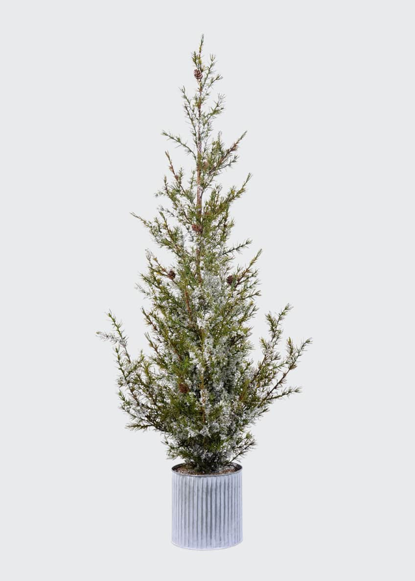 "Image 1 of 1: 49"" Green/White Potted Ponderosa Pine"