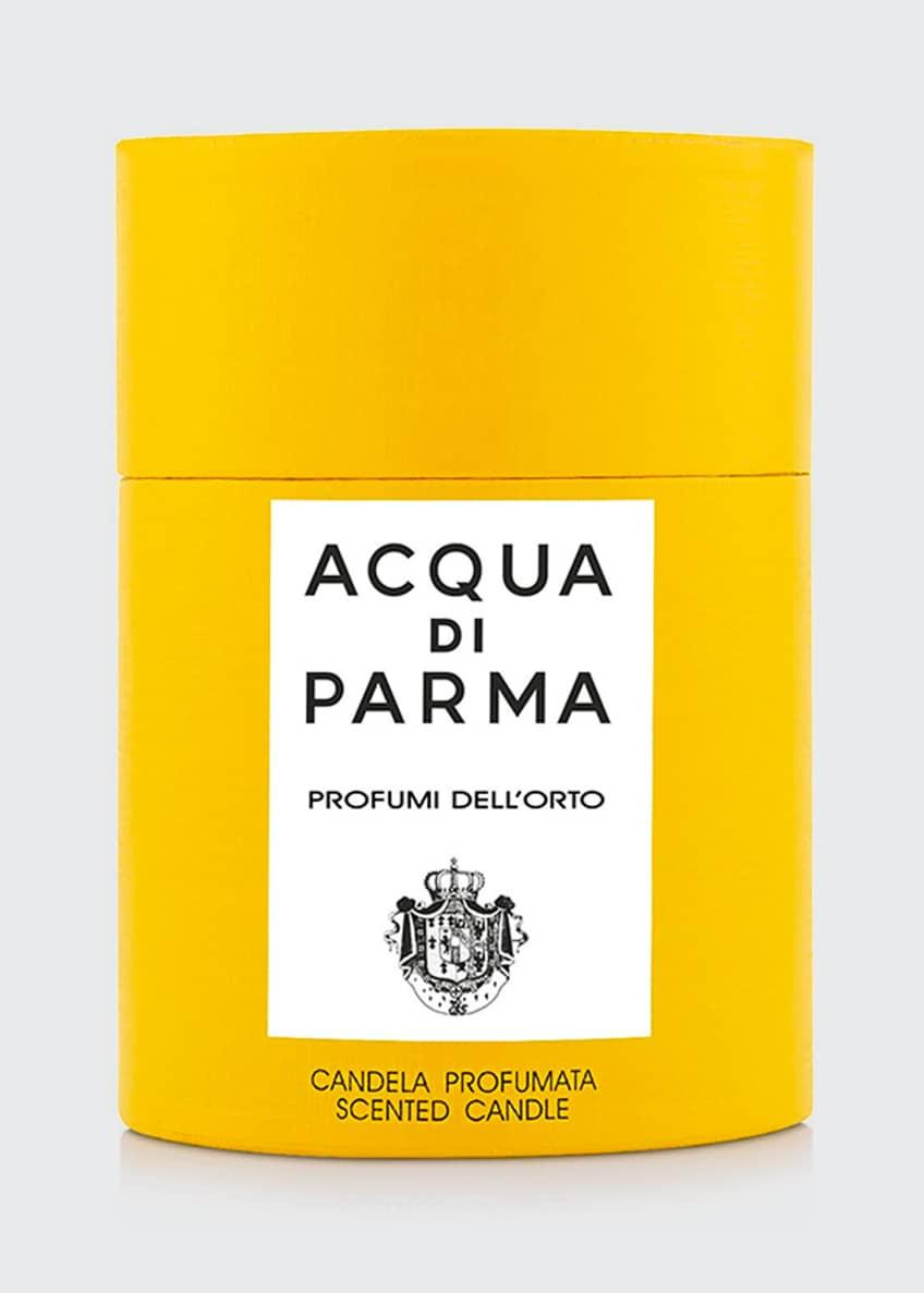 Acqua di Parma 7 oz. Profumi Dell'orto Candle - Bergdorf Goodman