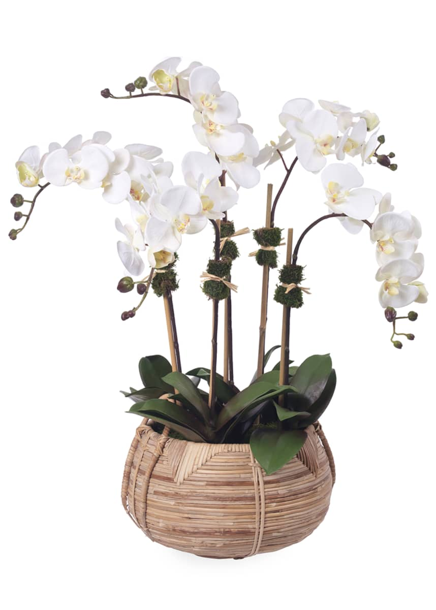Diane James Faux Phalaenopsis & Orchids in Cane Basket