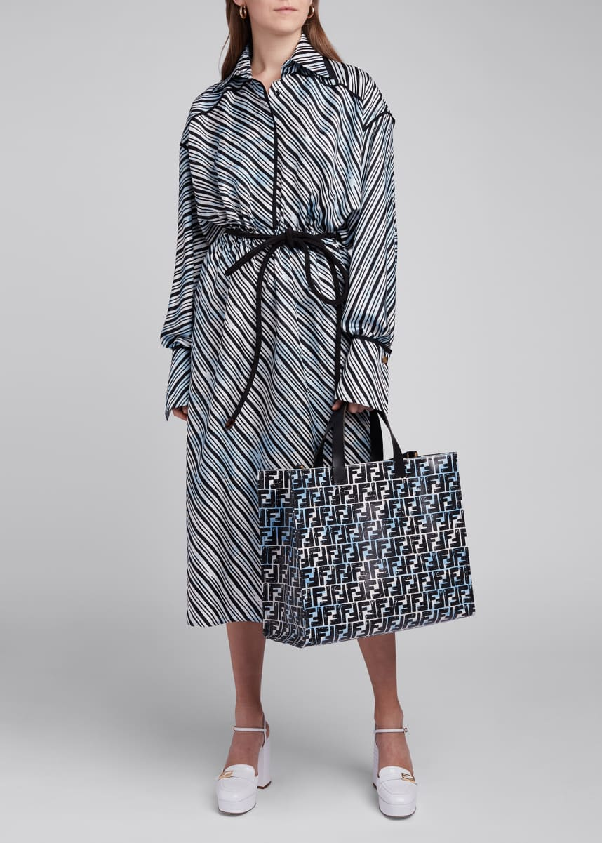 Fendi Sky Lines Silk-Twill Shirtdress