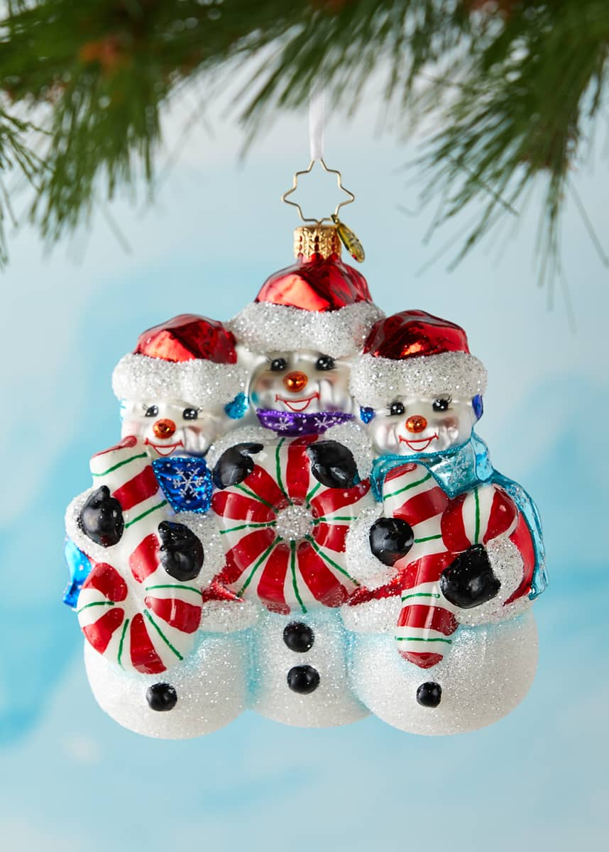 Christopher Radko A Joy To Behold Christmas Ornament