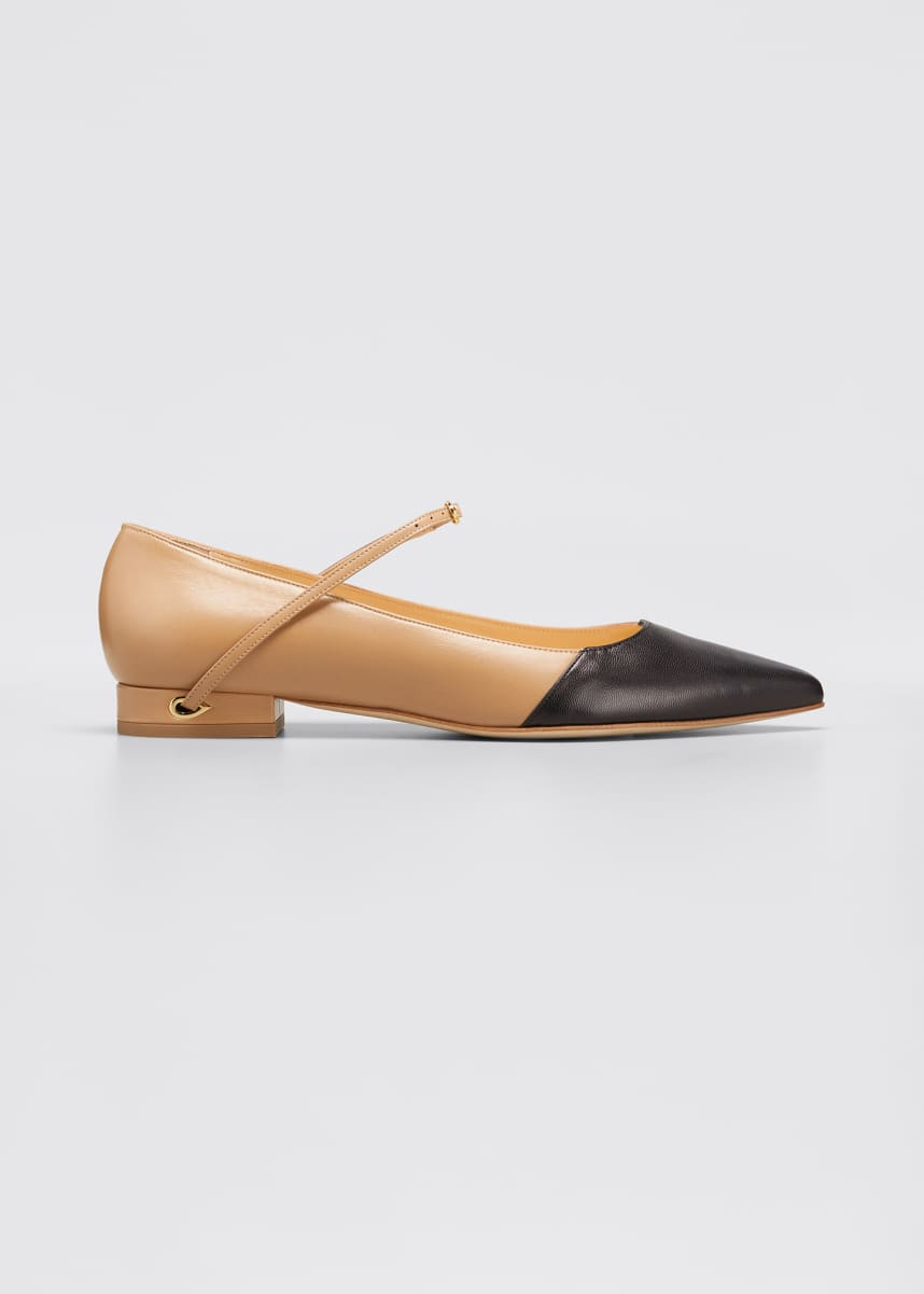 Jennifer Chamandi Lorenzo Bicolor Point-Toe Ballerina Flats