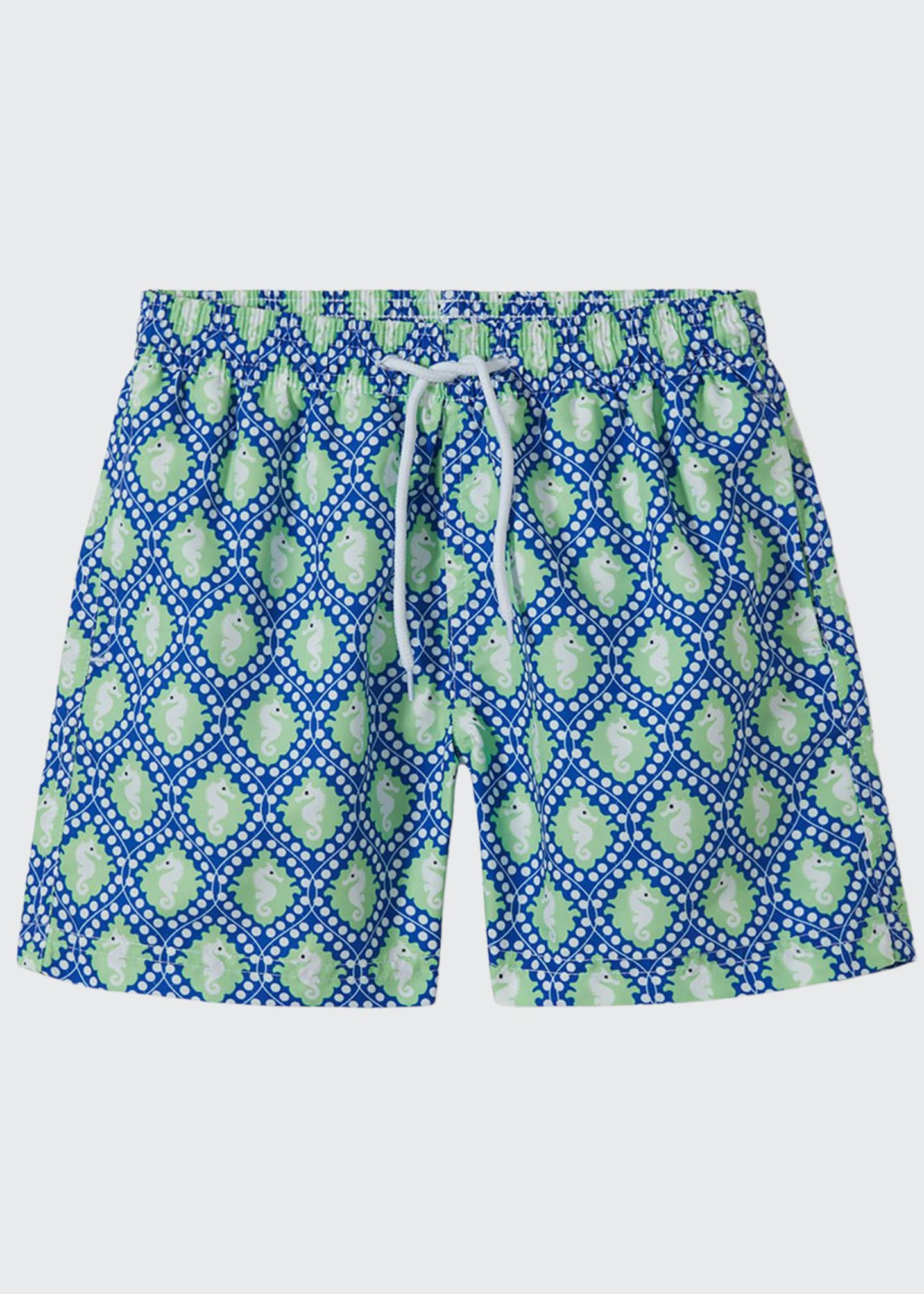 Image 1 of 1: Boys' Sea Horse Swim Trunks, 2-12