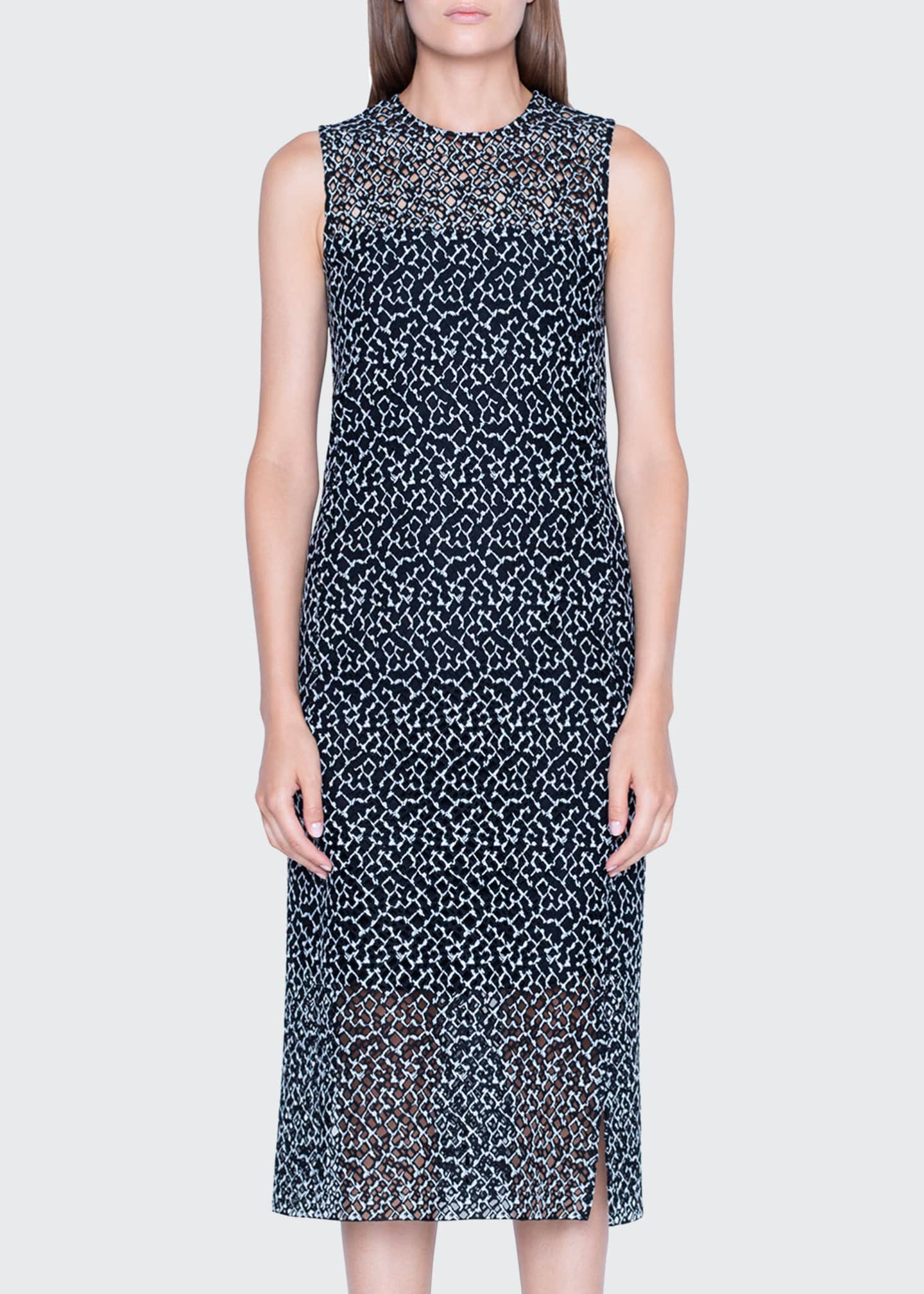 Image 3 of 3: St. Gallen Embroidered Lace Sleeveless Dress