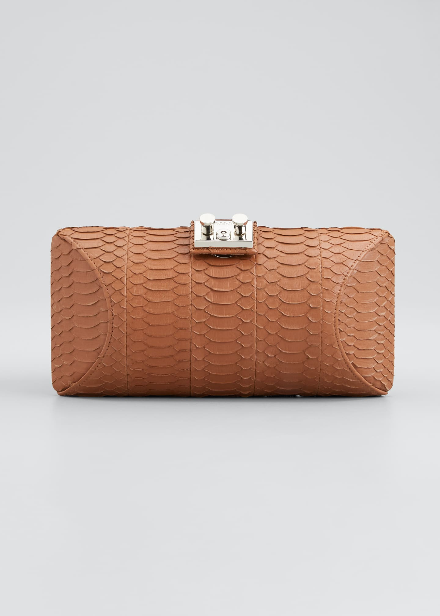 Image 1 of 5: Snake Clutch Bag
