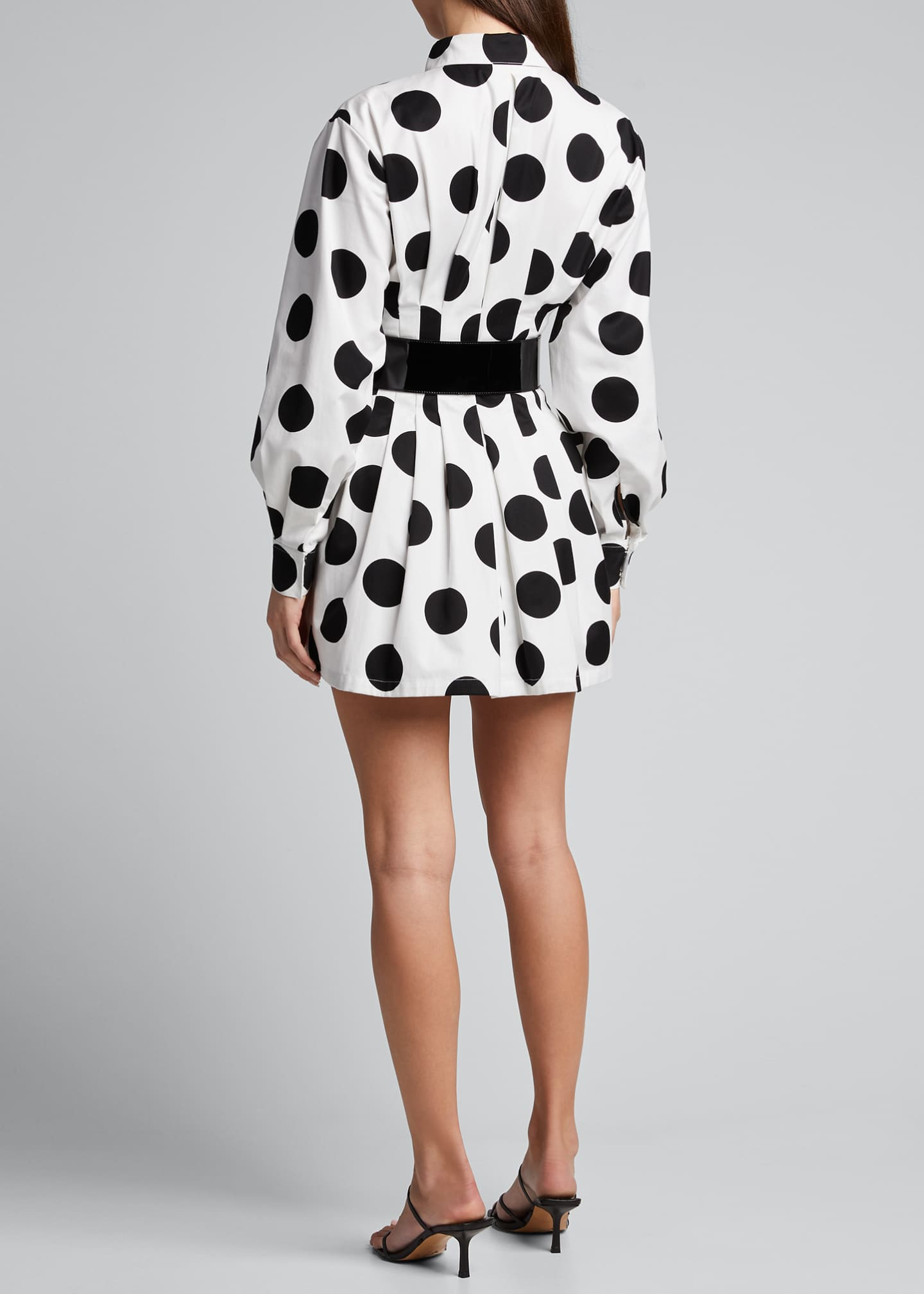 Image 2 of 5: Polka-Dot Shirtdress