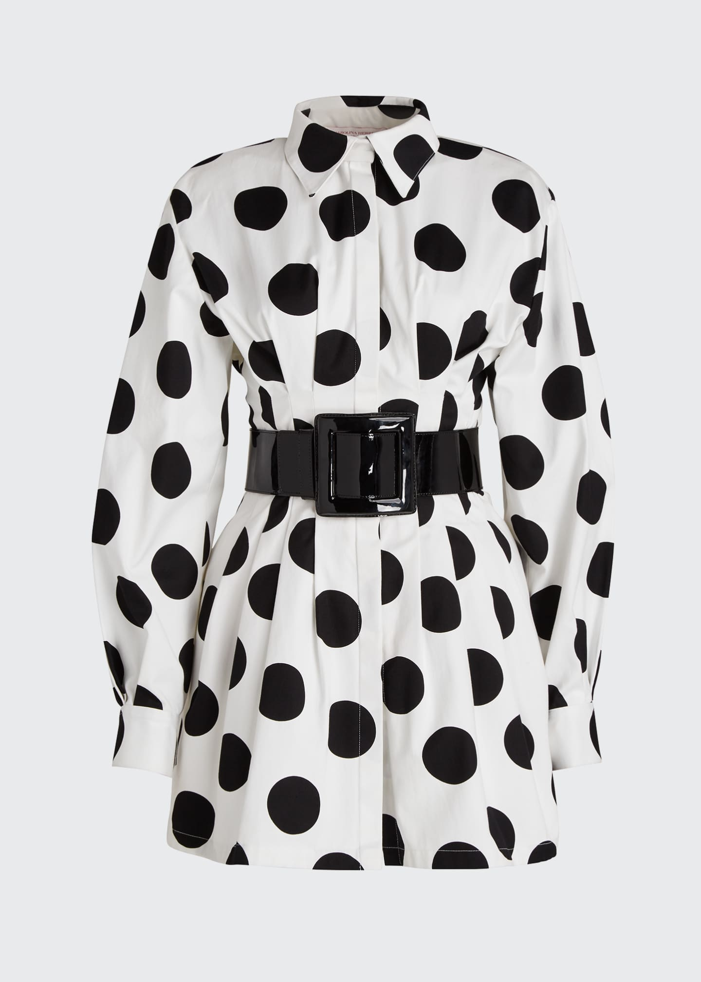 Image 5 of 5: Polka-Dot Shirtdress