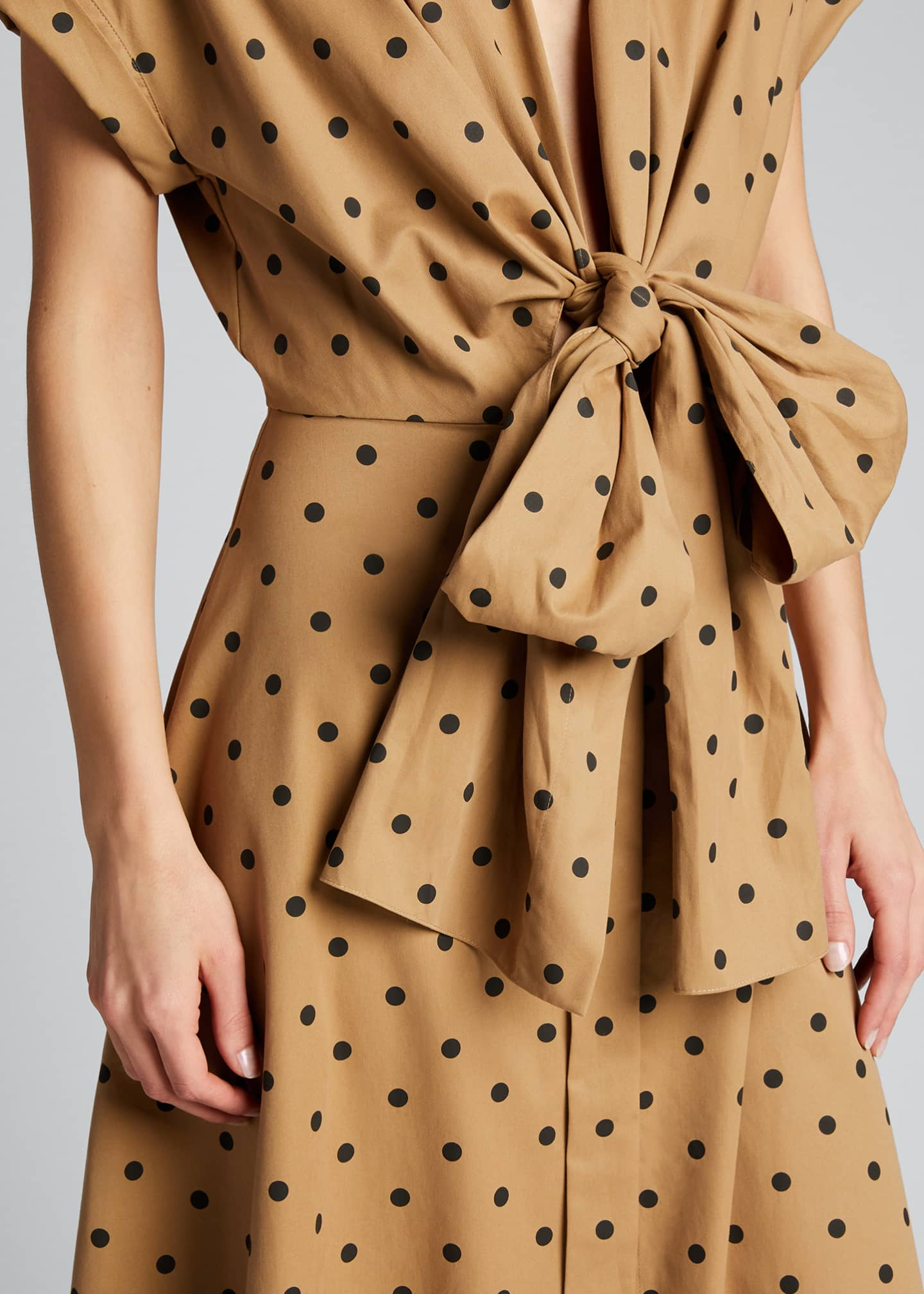 Image 4 of 5: Polka-Dotted Deep V Dress