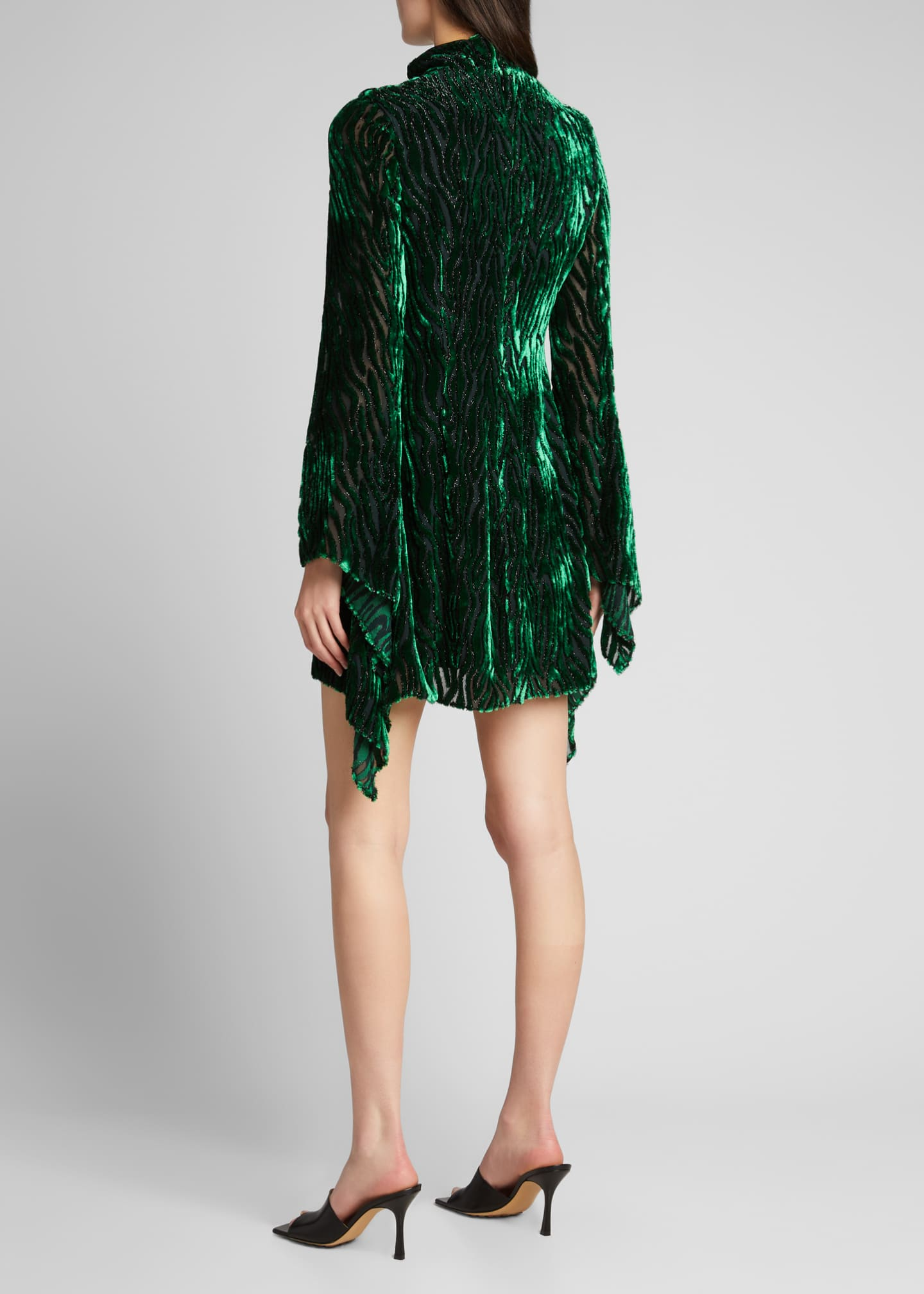 Image 2 of 5: Velvet Burnout Long-Sleeve Mini Dress